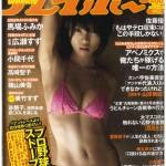 週刊プレイボーイ2015年2月9日号(表紙)